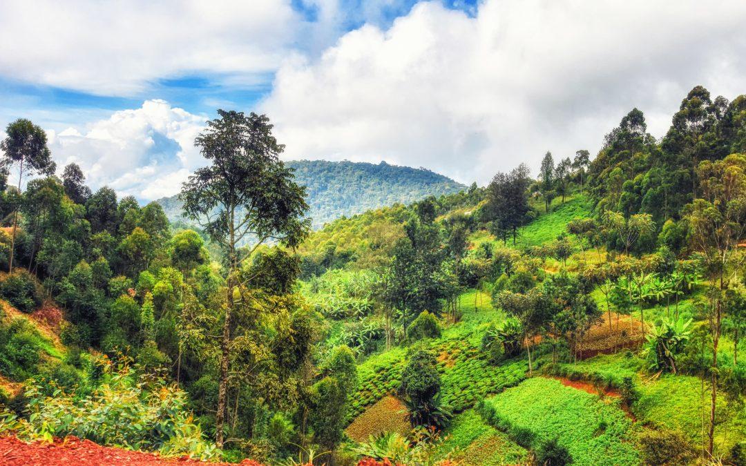 Inside Rwanda